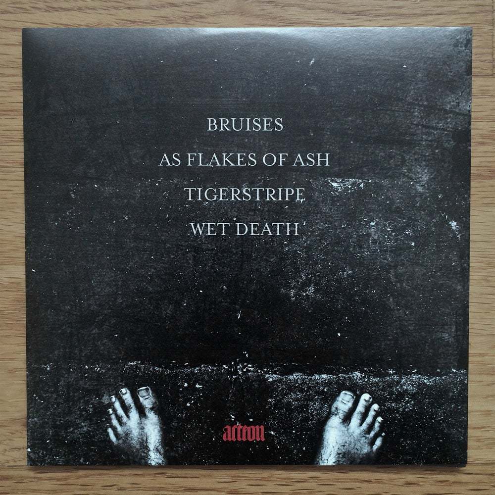 """Image of Forest Of Tygers - """"Bruises"""" CD EP"""