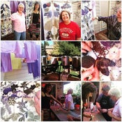 Image of Oct 14 - 16, 2016 Workshop in Fort Collins, CO: Dyeing and Printing with Natural Plant Materials