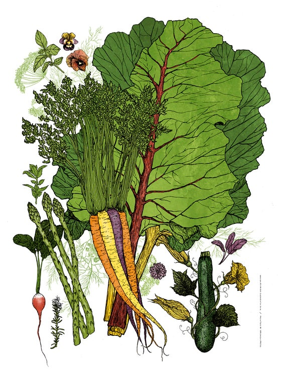 Image of Garden Bouquet Art Print