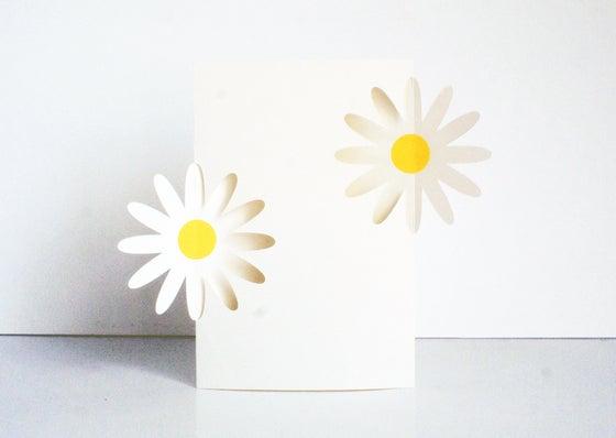Image of Daisy Daisy