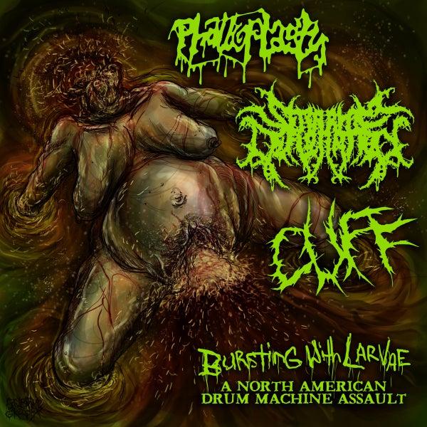 "Image of Seraphim Defloration/Phalloplasty/CUFF Split Album ""Bursting with Larvae"""