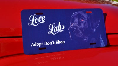 Image of Love Labs
