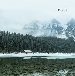"""Image of Tigers """"S/T"""""""