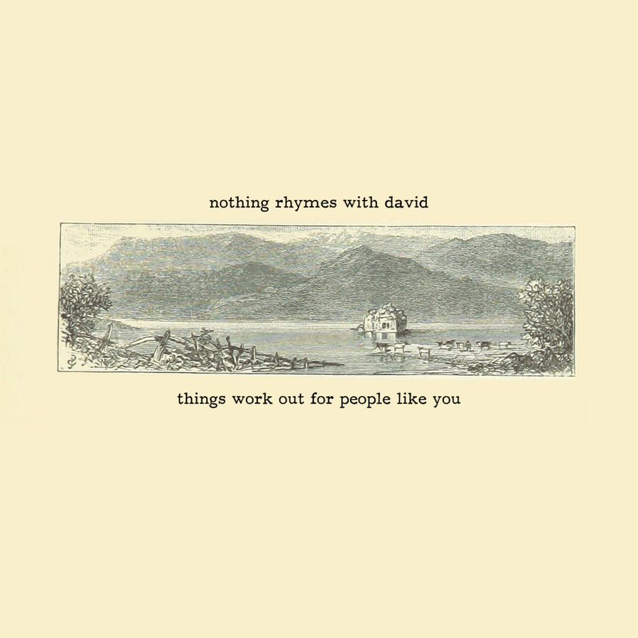 Image of STDR006: Nothing Rhymes With David - 'Things Work Out for People Like You' Tape