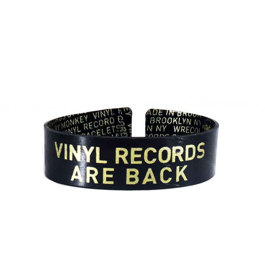 Image of Vinyl Records Are Back Band