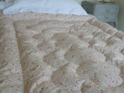 Image of Pretty Green Paisley And Green Dot Single Eiderdown
