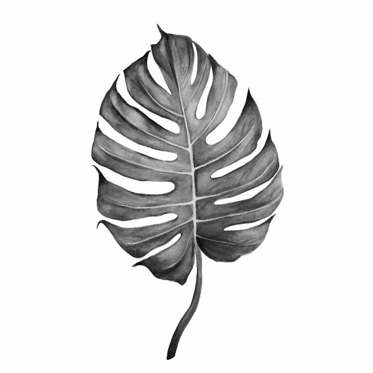 Image of Split Leaf B&W