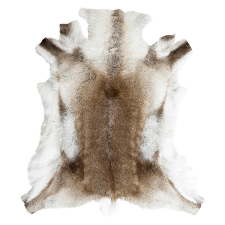 Image of Reindeer Natural Hide