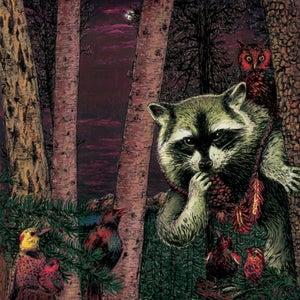 "Image of Wild Raccoon - ""Half Pine Cone"" album - vinyl"