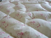 Image of Beautiful Louise Loves Roses Eiderdown