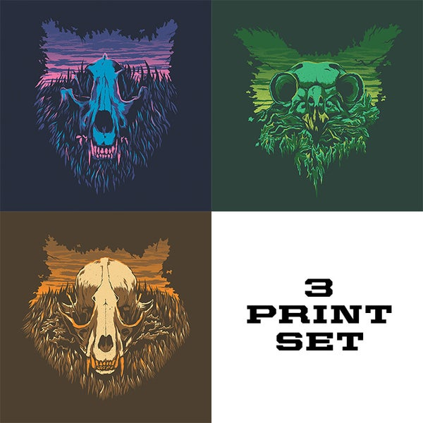 Image of The Woodlands Series: The Wolf, The Owl, The Raccoon