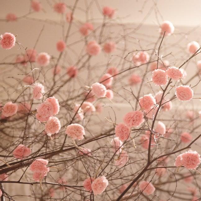 Image of Paper Blossom Box (50 pcs)