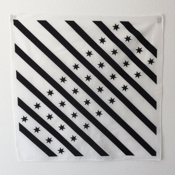 Image of White and Black Chicago flag bandana