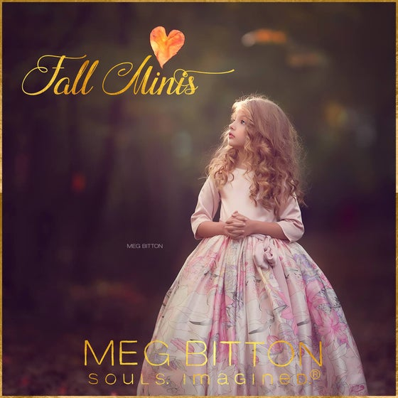 Image of Fall Mini Sessions