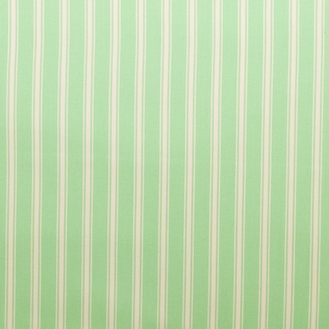Image of Sanibel Stripe Green