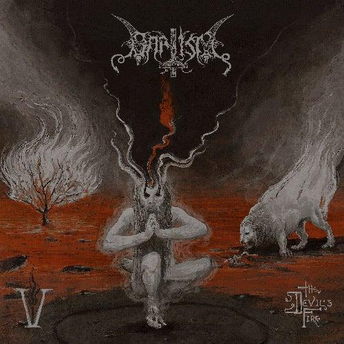 Image of V: The Devil's Fire CD *signed*