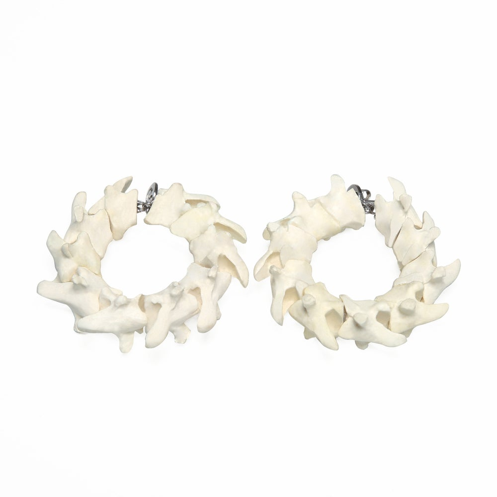 Image of Catspine Earrings