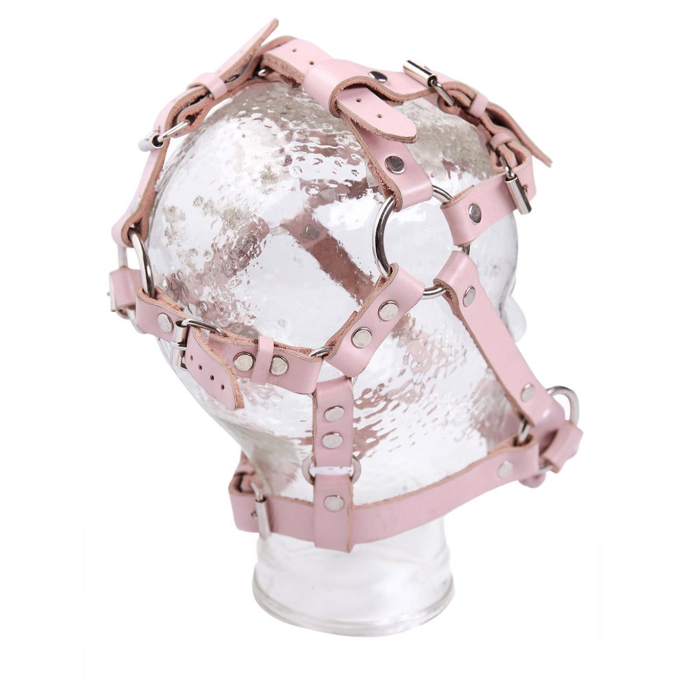 Image of Gag Skull Harness