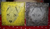 Image of Jack Russell Terrier coasters