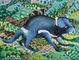 Image of Tasmanian devil