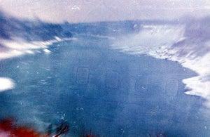 Image of blue twenty-two: Wild Anima