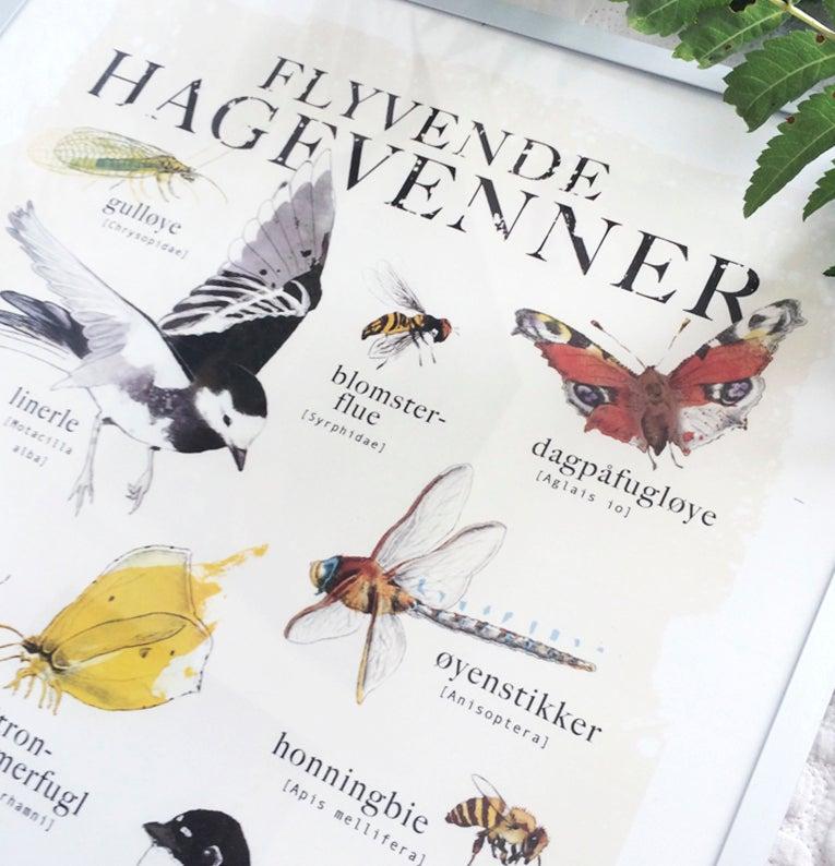 Image of 'Flyvende hagevenner'