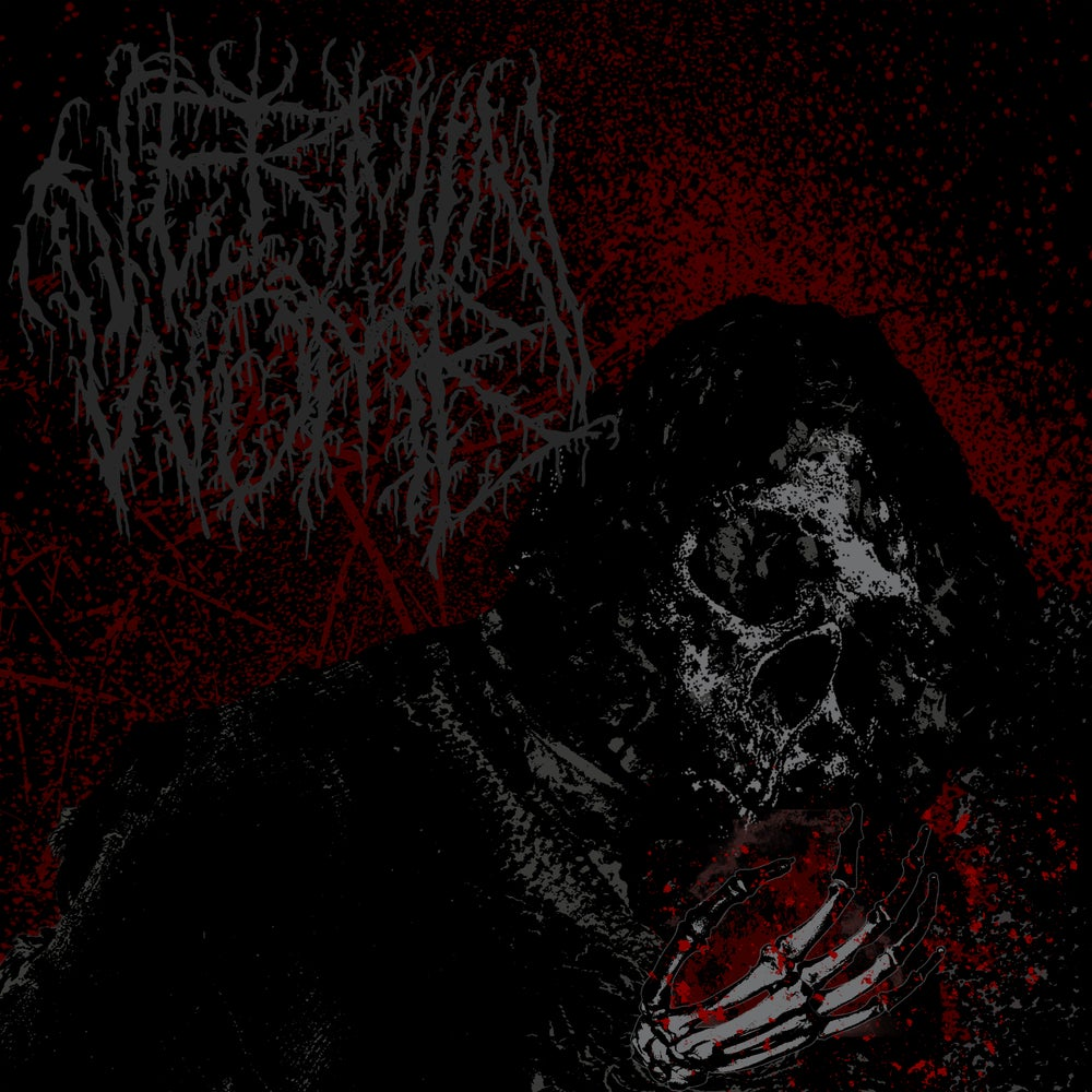 Image of Vermin Womb - Decline CD