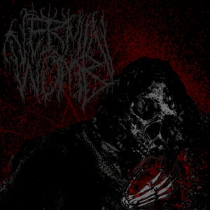 Image of Vermin Womb - Decline CD (Pre-Order)
