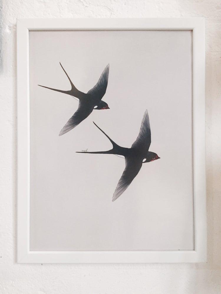 "Image of Affiche A3 «Hirondelles"" SOLDE -30%"