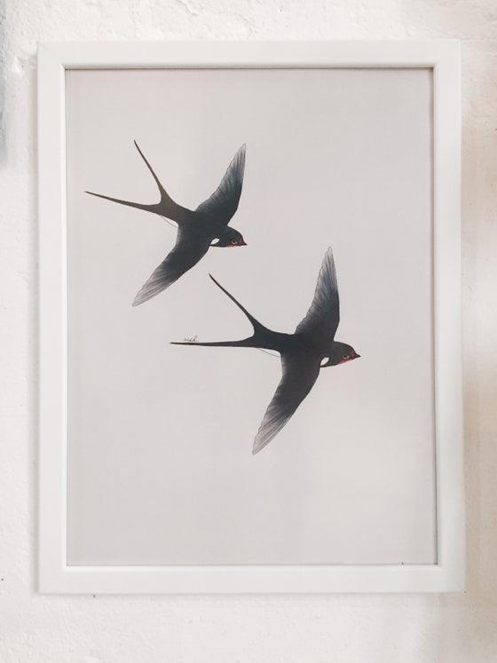 "Image of Affiche A3 «Hirondelles"""
