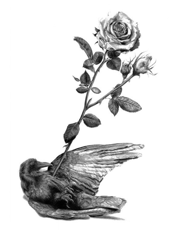 "Image of Crow and Arrow Giclée limited ed. print 16 x 20"""