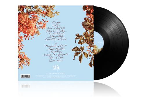 Image of Scott Matthews - Home Part II - 180g Vinyl
