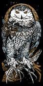 Image of ASKALAPHOS - Snow Owl - art print