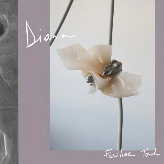 "Image of DIANA - Familiar Touch (12"" LP)"