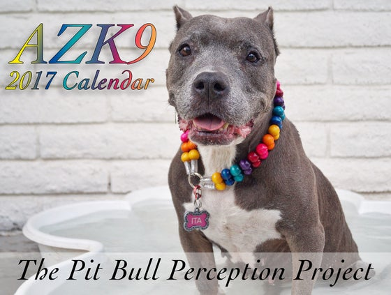 Image of *THE DEAL* (2) 2017 Calendars for $30 ** 2017 AZK9 CALENDAR
