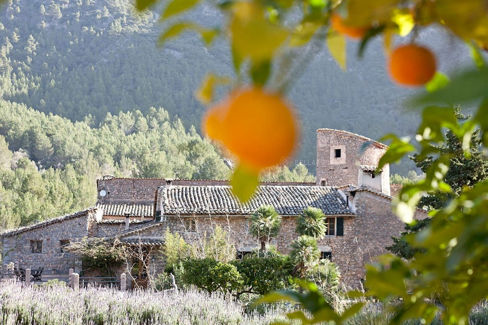 Image of PONDEROSA WORKSHOP : SPAIN  JUNE 19-23 2017