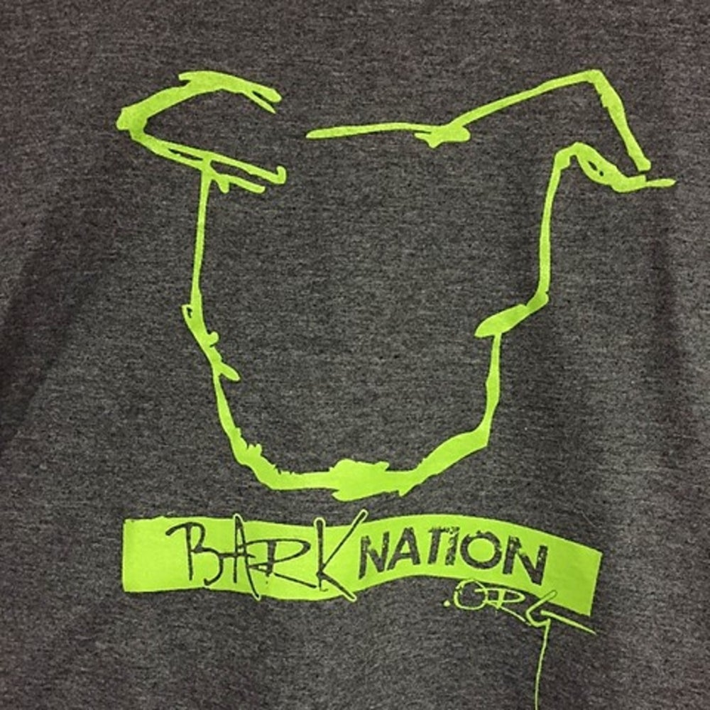 Image of BN Soft-Style Classic Tee - Long Sleeved - Charcoal + Lime