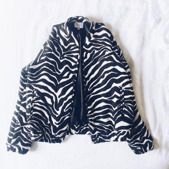 Image of Bomber Zebra