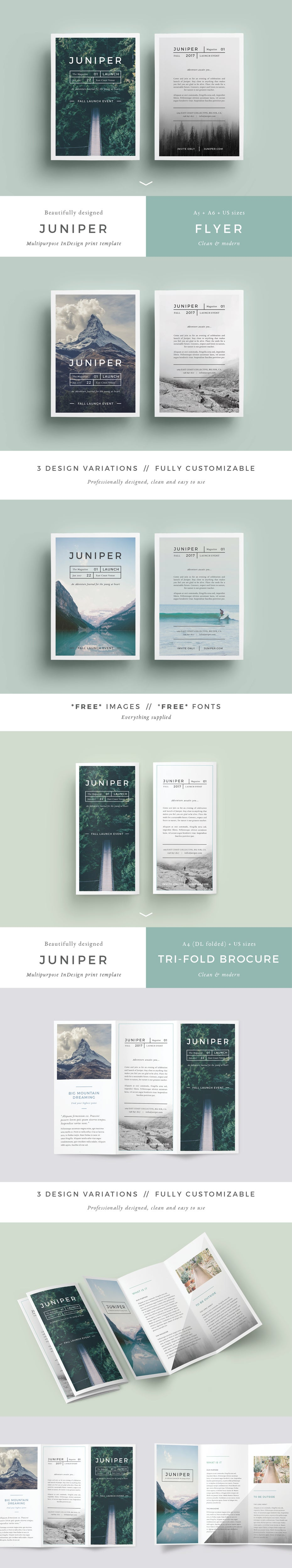 Image of J U N I P E R Branding Bundle