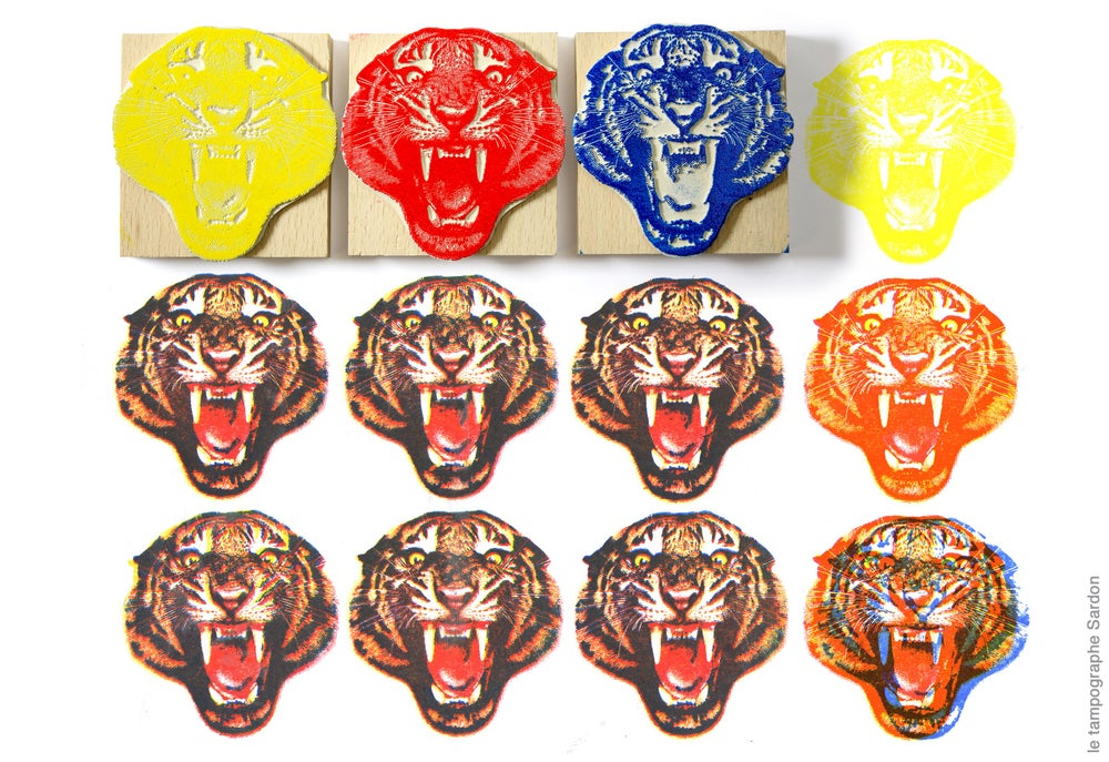 Image of Tigre en trois couleurs. Three colors tiger.