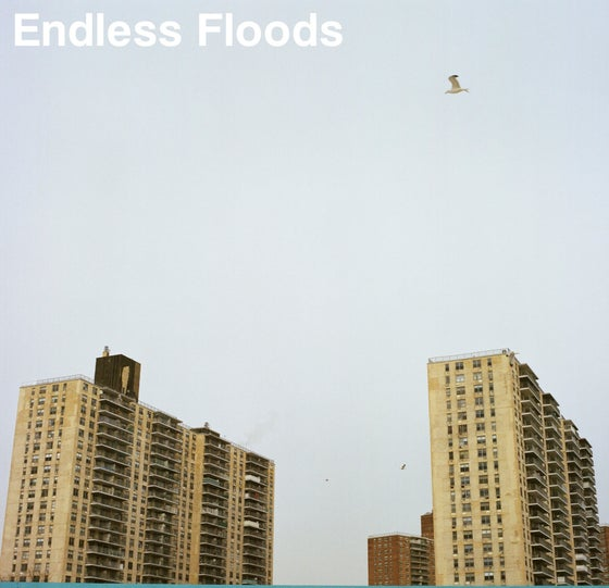 Image of Endless Floods - II LP (DC28)