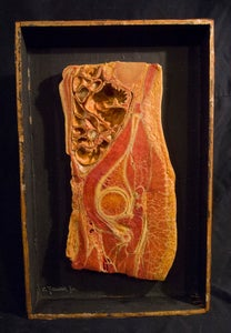 Image of SOLD: Antique Anatomical Wax Moulage #6