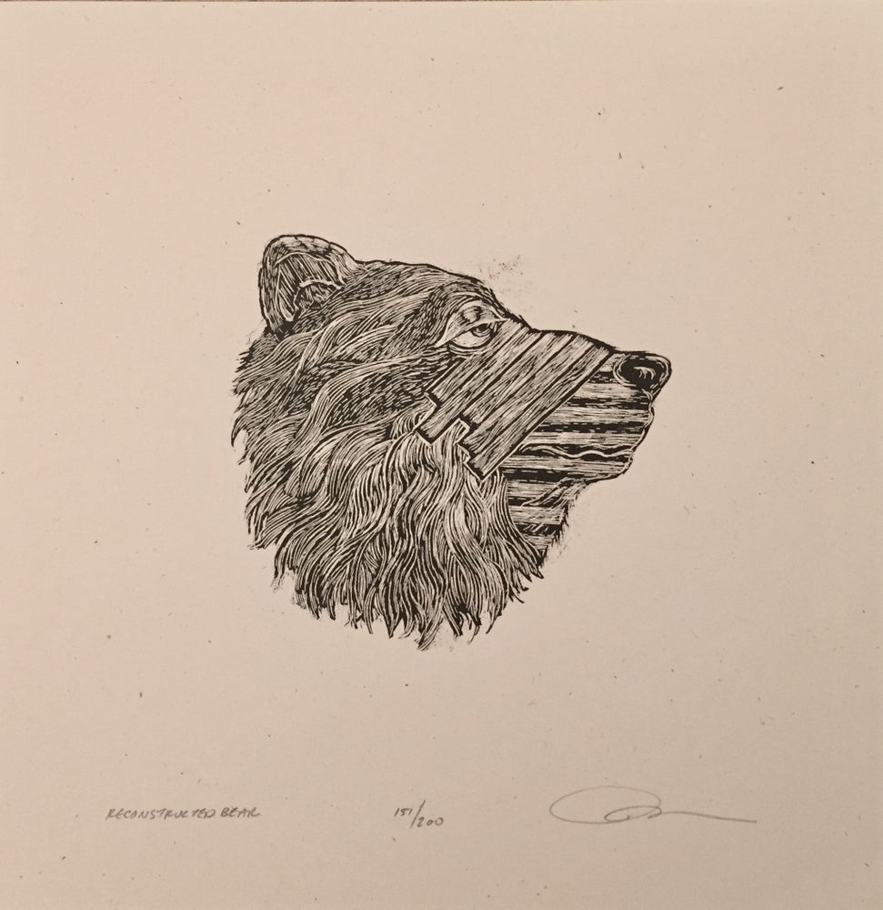 Image of Reconstructed bear