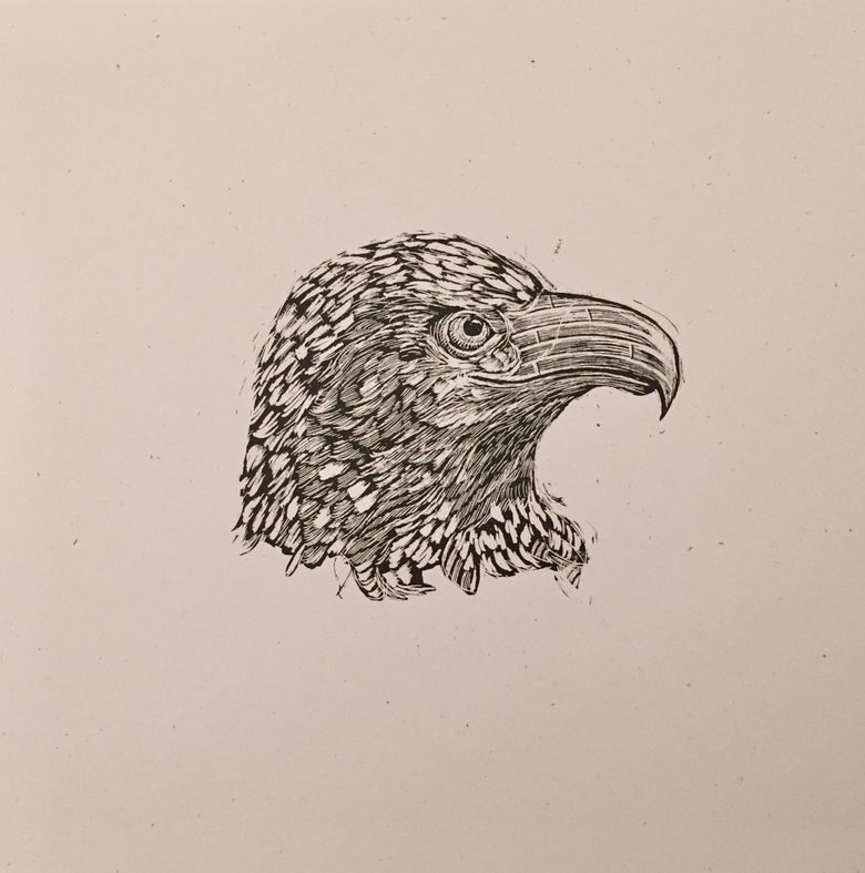 Image of Reconstructed Bald Eagle