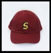 Image of Savage Tour Dad Hat Burgundy ( Gold )