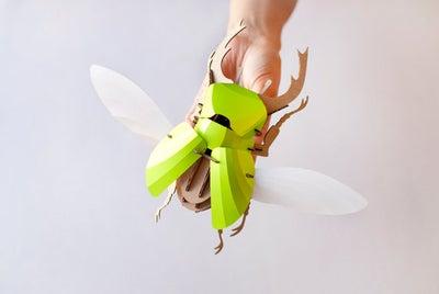Image of Escarabajo ASSEMBLI