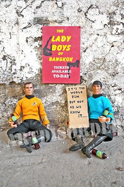Image of The Lady Boys of Bangkok