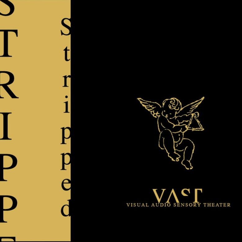 "Image of VAST ""Stripped""  2xLP (Ltd 500) Visual Audio Sensory Theater"