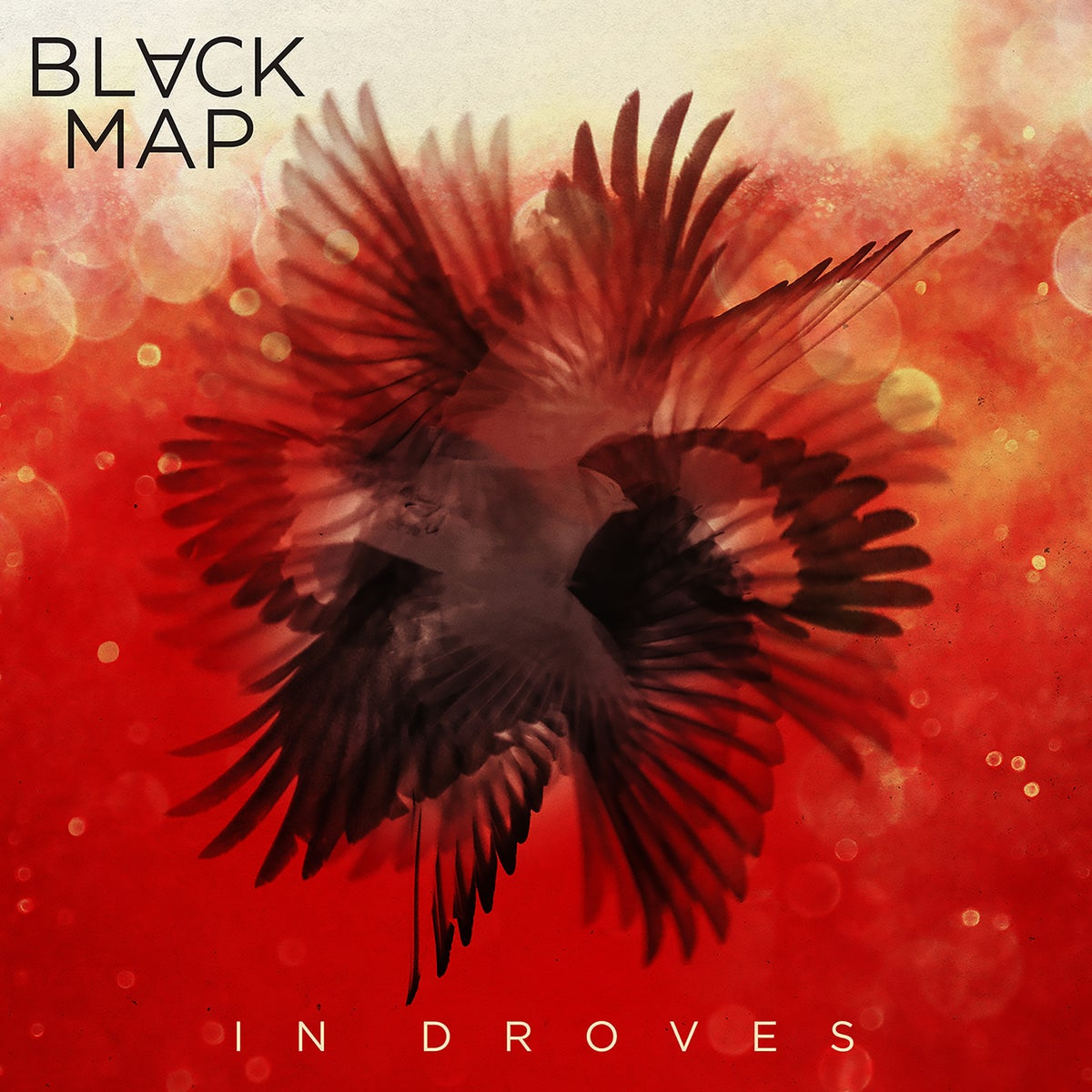 "Image of Black Map ""In Droves CD"