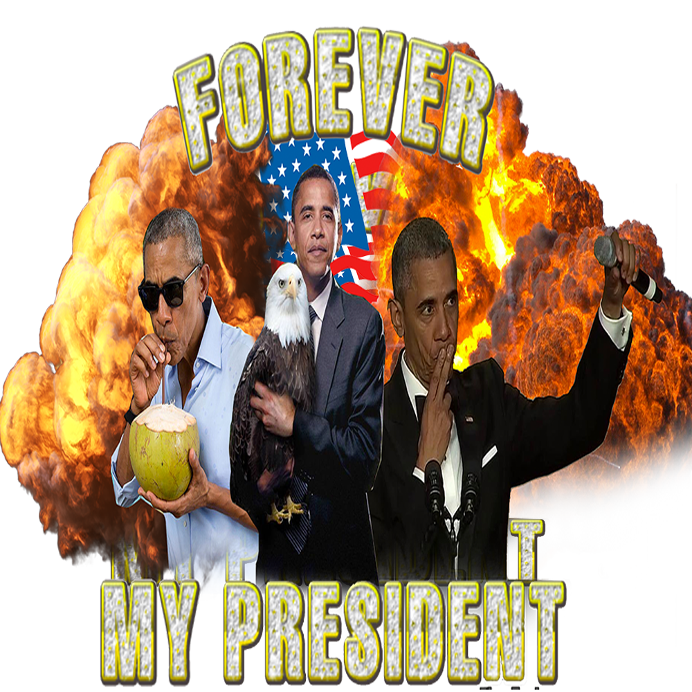 Image of Forever My President Hoodie
